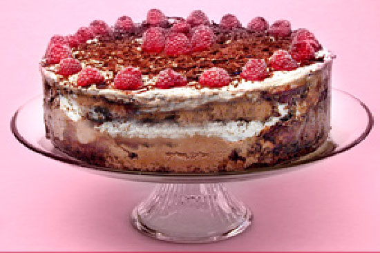 Chocolate raspberry ice-cream cake