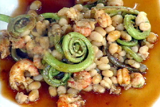 Fiddlehead with white bean and shrimp salad